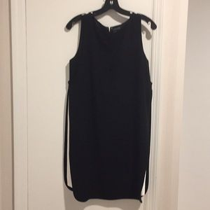 NWOT Calvin Klein shift dress, sz 6